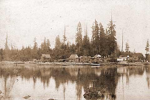 Squatters' shacks on Deadman's Island, 1891