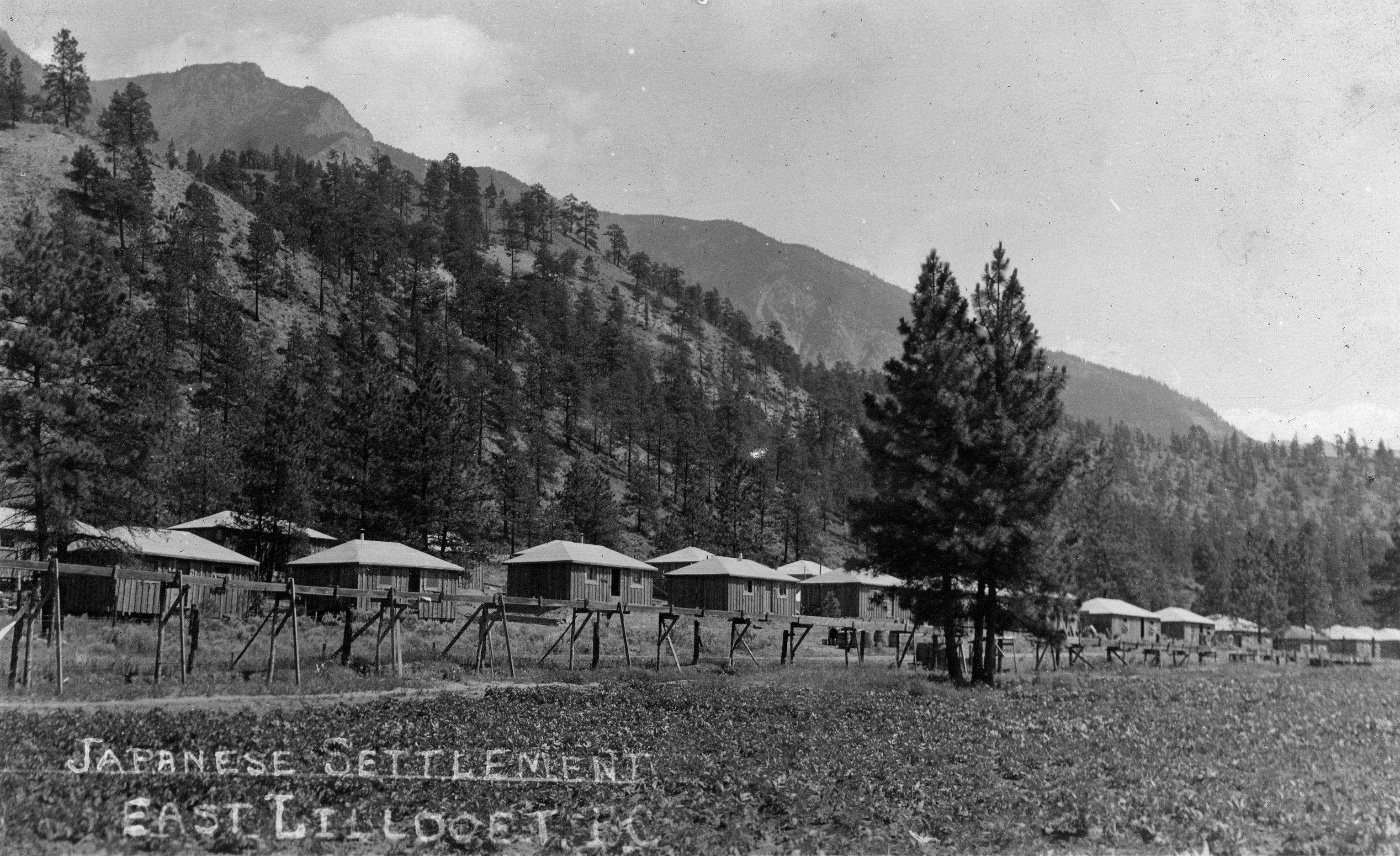 Camp japonais à East Lillooet, en Colombie Britannique