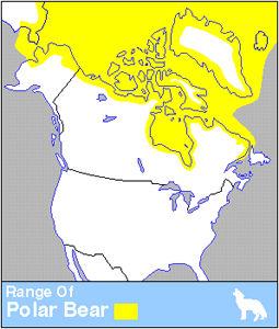 Ours polaire, répartition de l