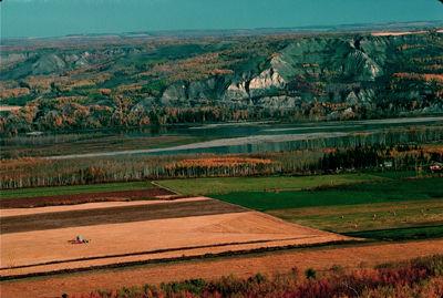 Farm Fields, Peace River Lowlands