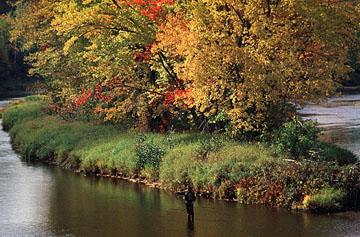 Pêche au saumon sur la rivière Miramichi