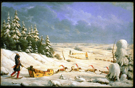 Winter Travelling in Dogsled