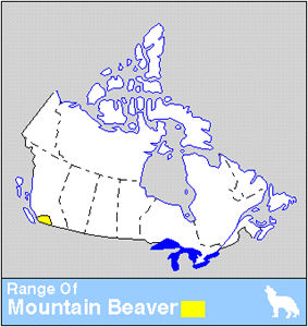 Mountain Beaver Distribution