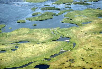 Hudson Bay Wetland