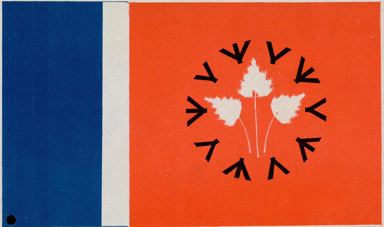 Motif de drapeau proposé : bouleau