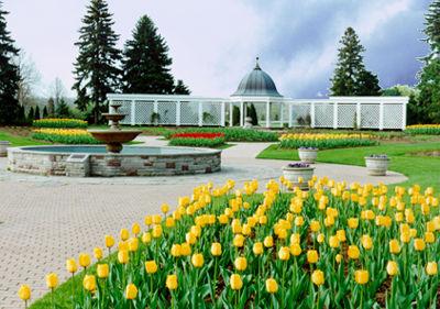 Chutes Niagara, Jardin botanique des