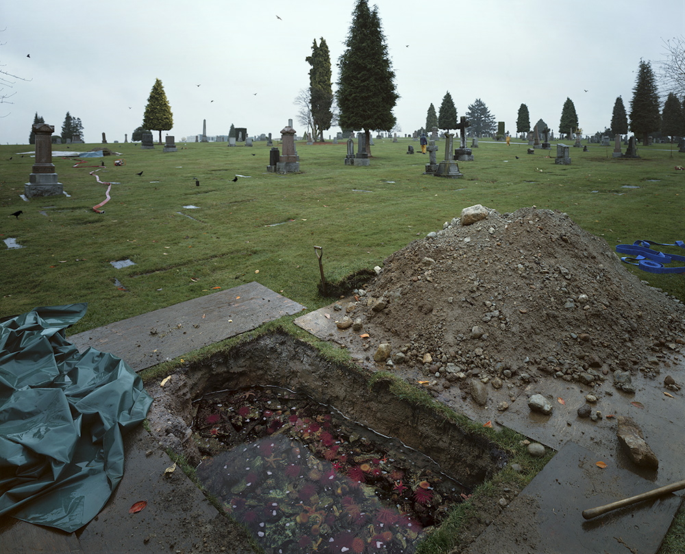 The Flooded Grave (1998-2000