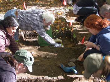 Excavation, Lawson Site