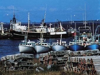 Lobster Fishing Boats, Mahone Bay
