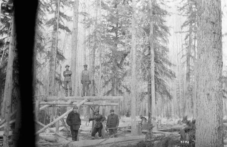 Lumberjacks in British Columbia or Alberta, 1920.