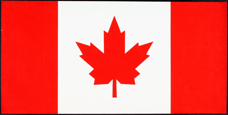 Motif de drapeau proposé : motif final sélectionné