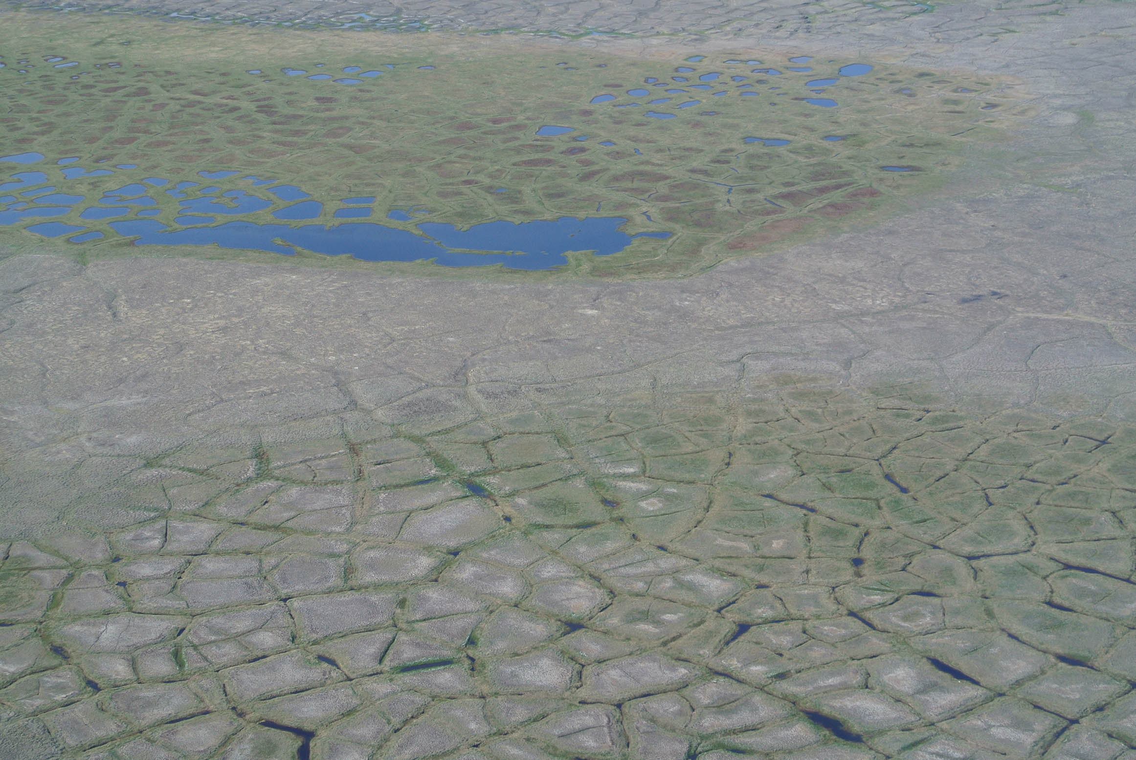 Thaw Ponds