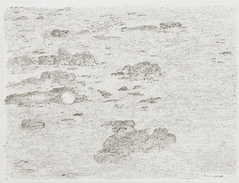 Shuvinai Ashoona Landscape with Grass, 1996, black felt pen on ivory wove paper, 25.5 x 33.2 cm.