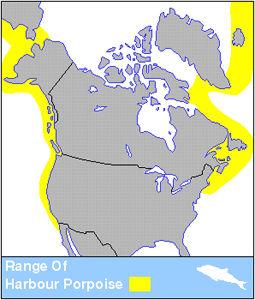 Harbour Porpoise Distribution
