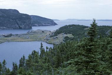 Parc national Terra-Nova
