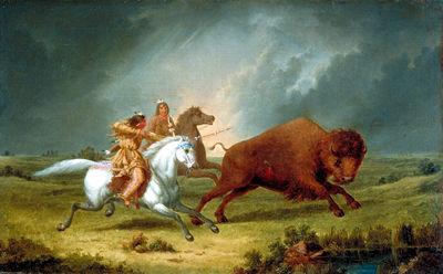 Assiniboines à la chasse au bison
