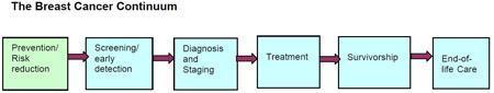Breast Cancer Continuum