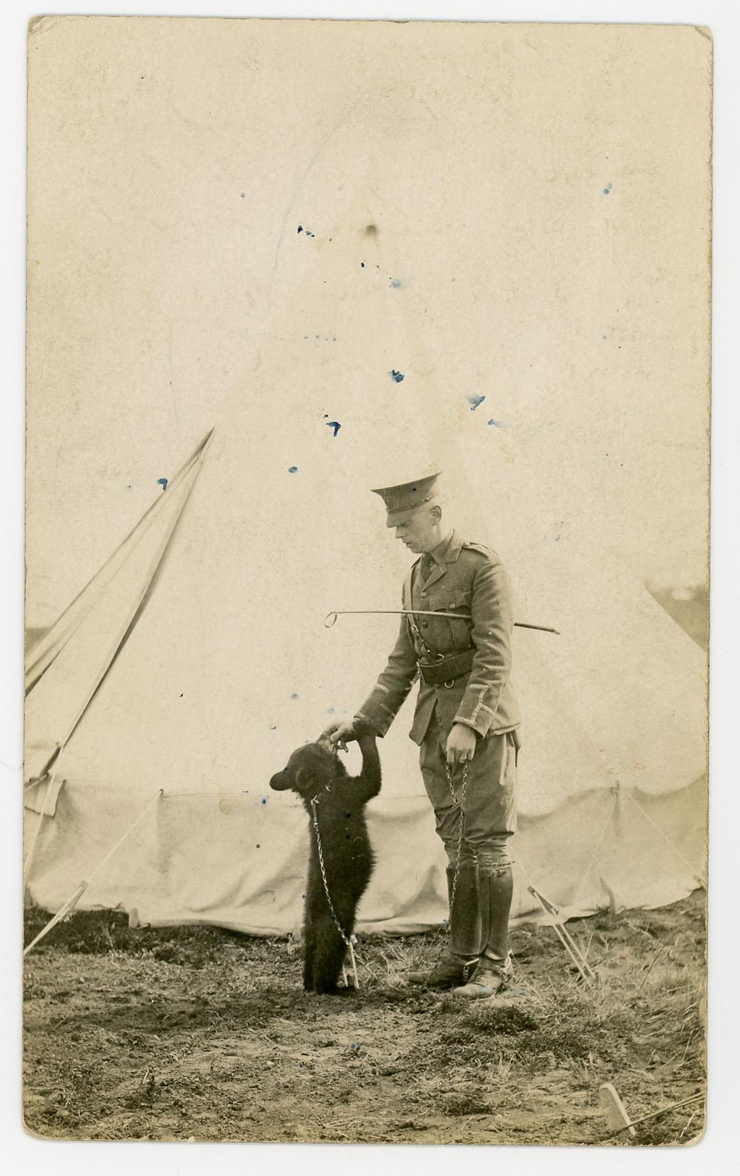 Harry Colebourn et Winnie