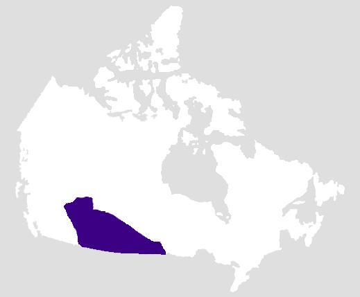 Régions culturelles autochtones : les Plaines