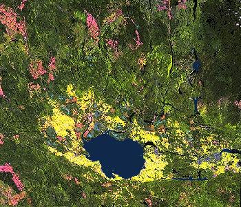 Lac-Saint-Jean (photo aérienne)