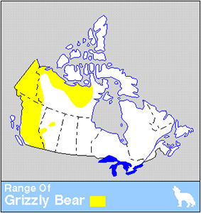 Grizzly Bear Distribution