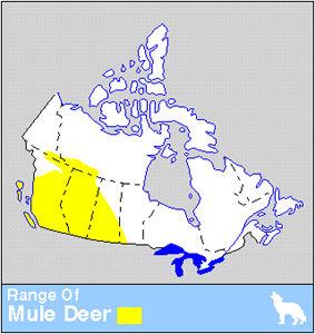 Mule Deer Distribution