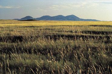 Alberta Southern Prairies
