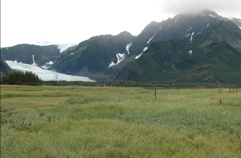 Glacier Pedersen, Alaska (Après)