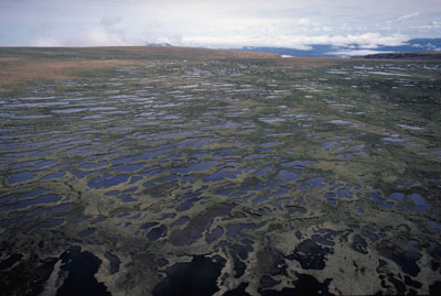 Tablelands Plateau, Gros Morne