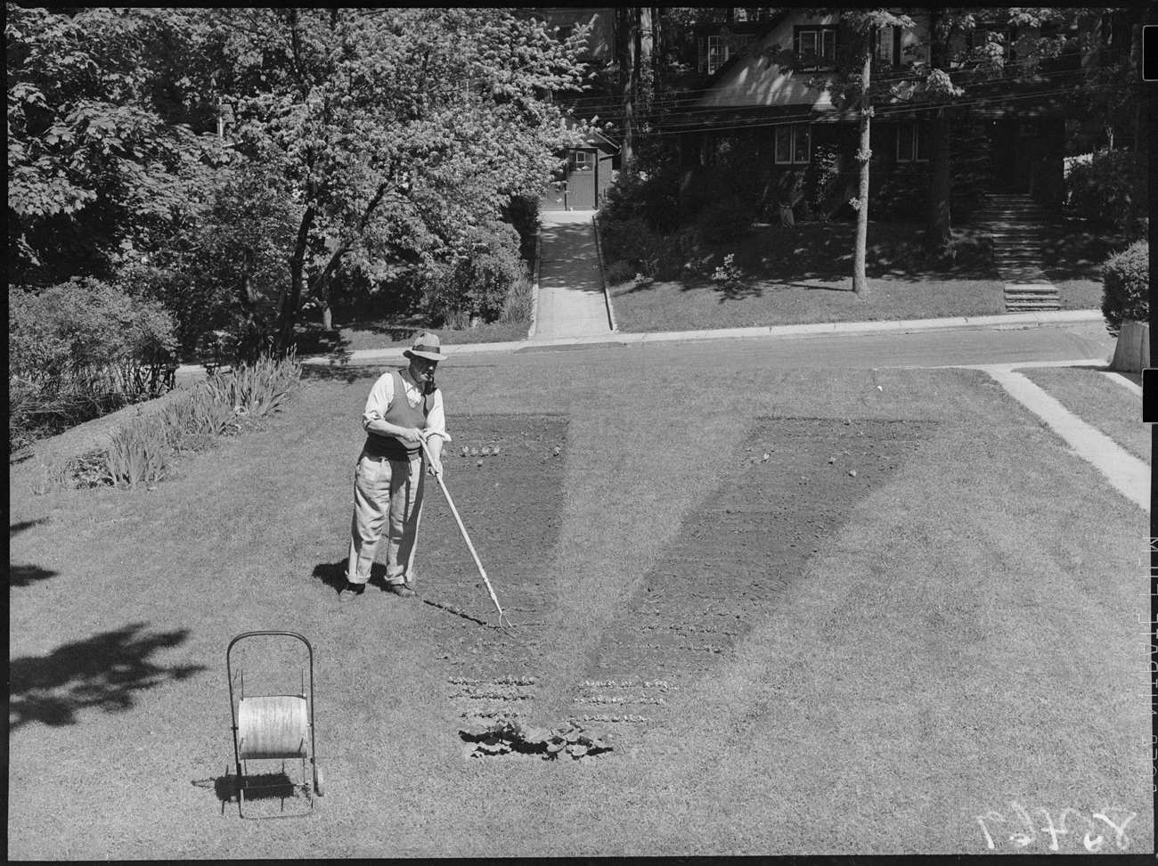 Toronto Victory Garden, Pine Cres.