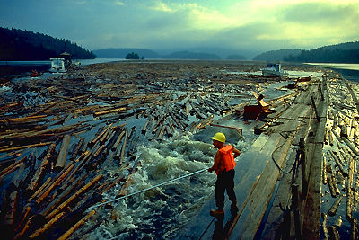 Logging, Gatineau River