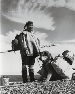 Inuit et chien de bât