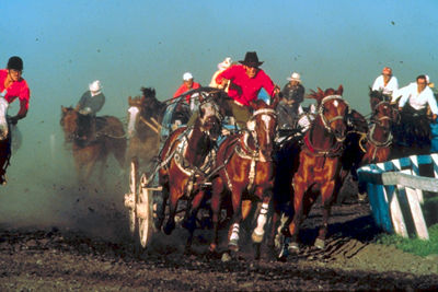 Chuckwagon Race, High River