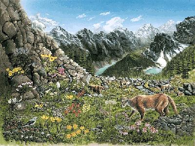 Écosystème de la montagne