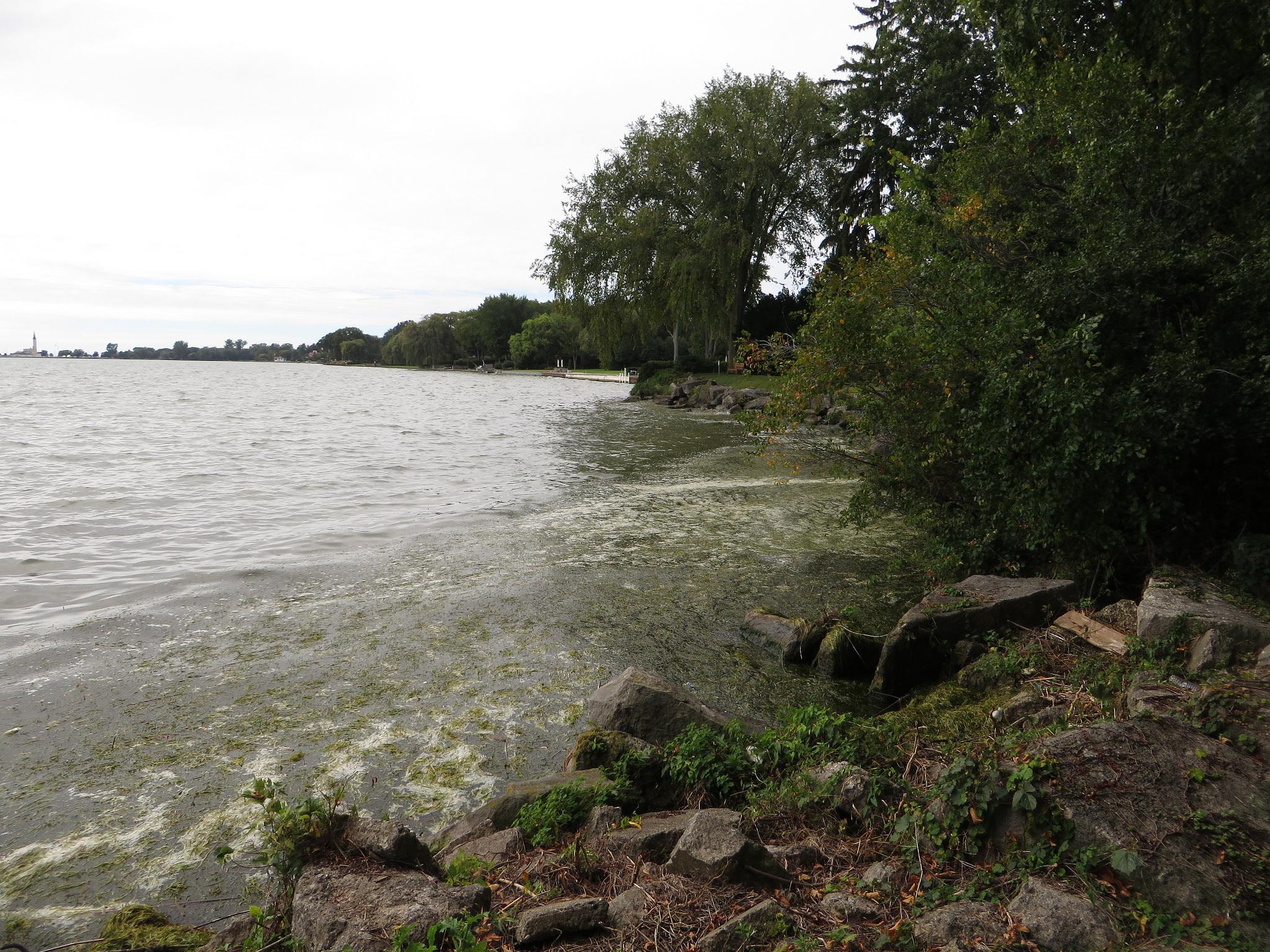 Lac St. Clair