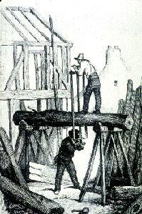 Carpenters Sawing a Log
