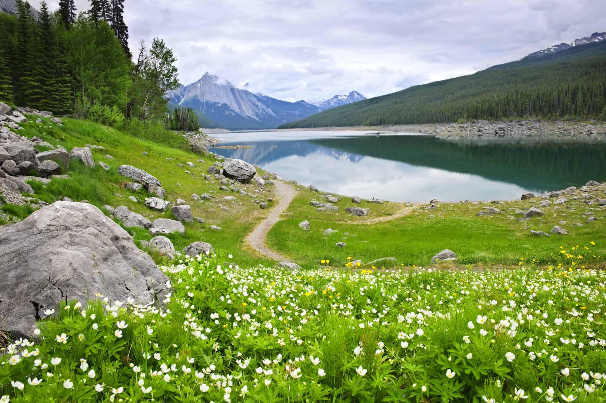 Medicine Lake au parc national Jasper