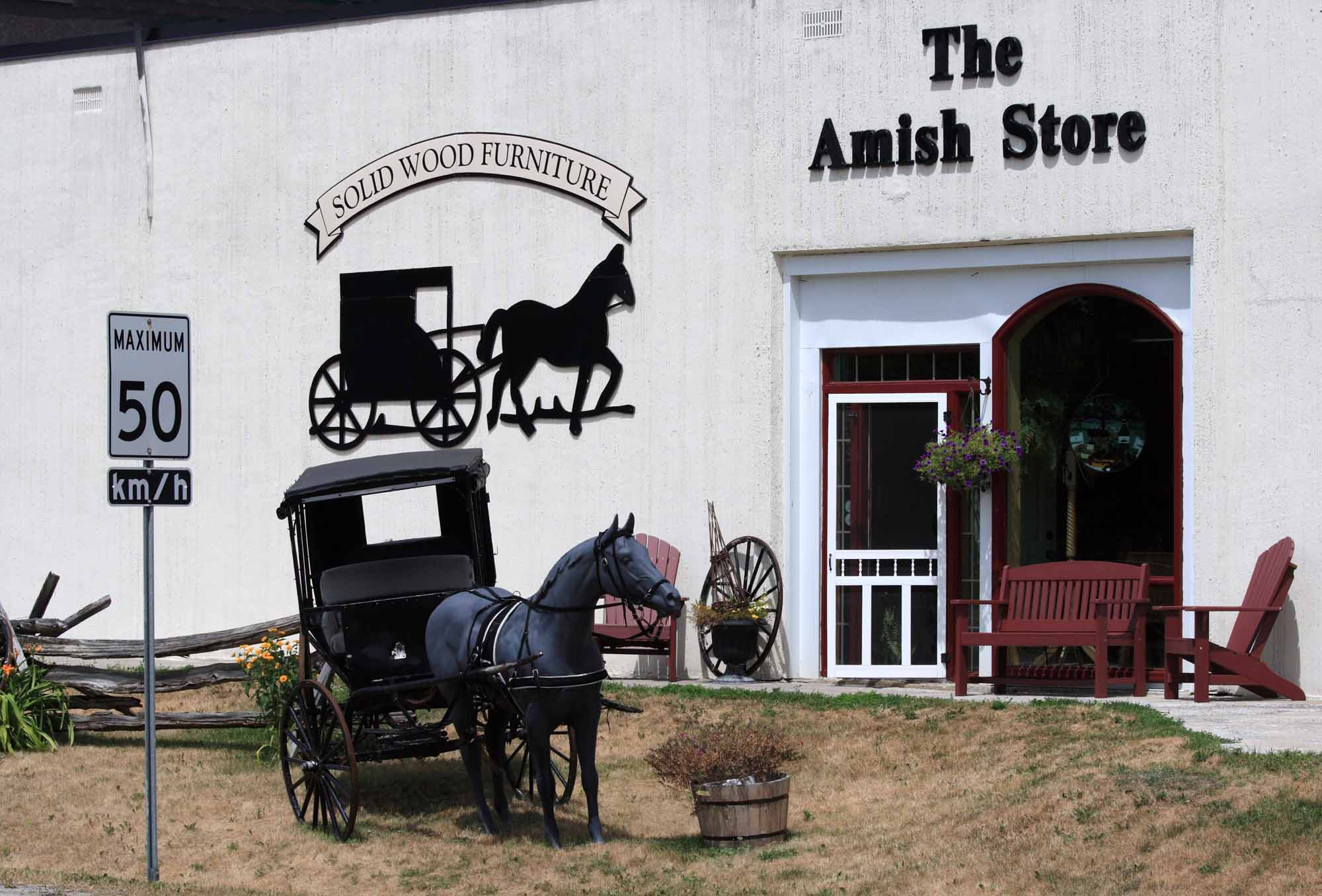 The Amish Store
