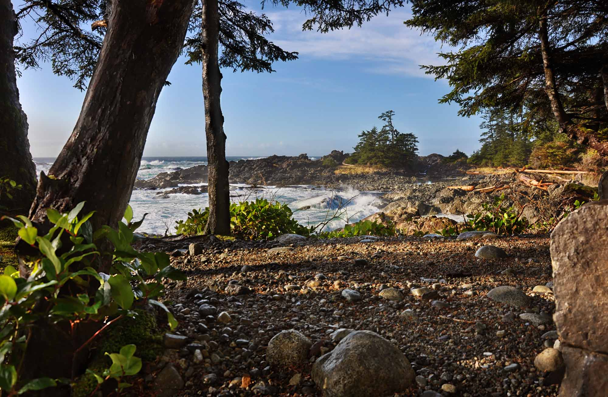 Ucluelet Trail