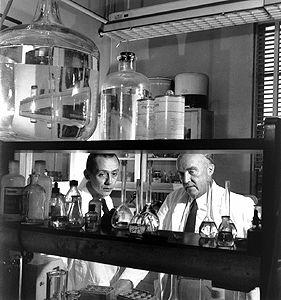 Charles Herbert Best, physiologist