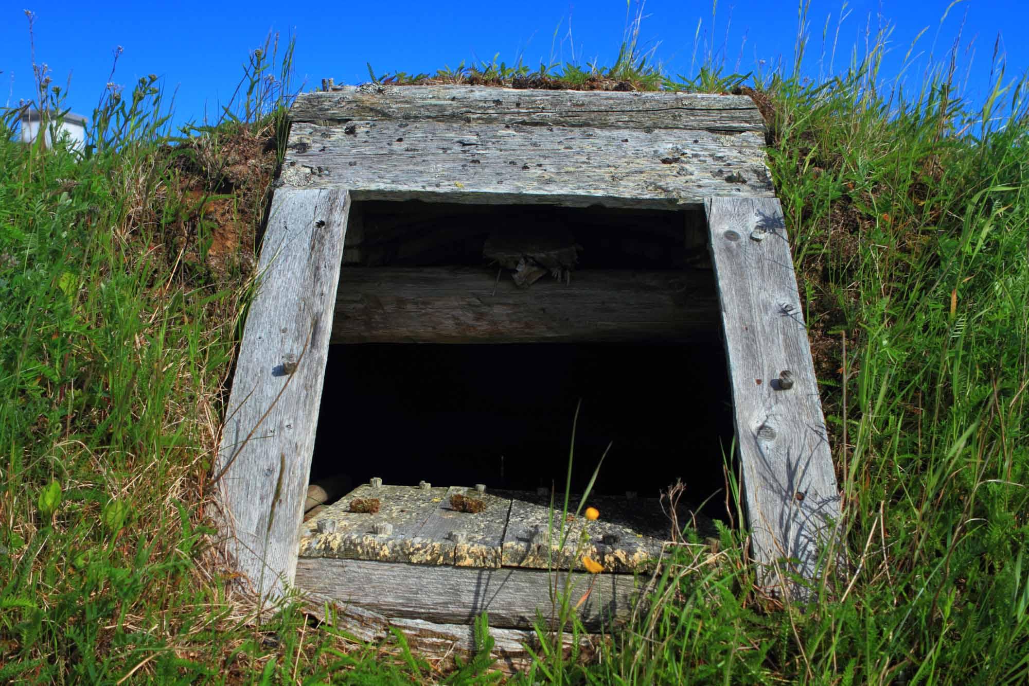 Norse settlement
