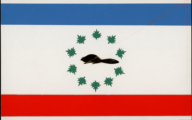 Motif de drapeau proposé : castor