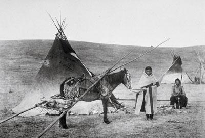 Tsuut'ina Travois and Tipi