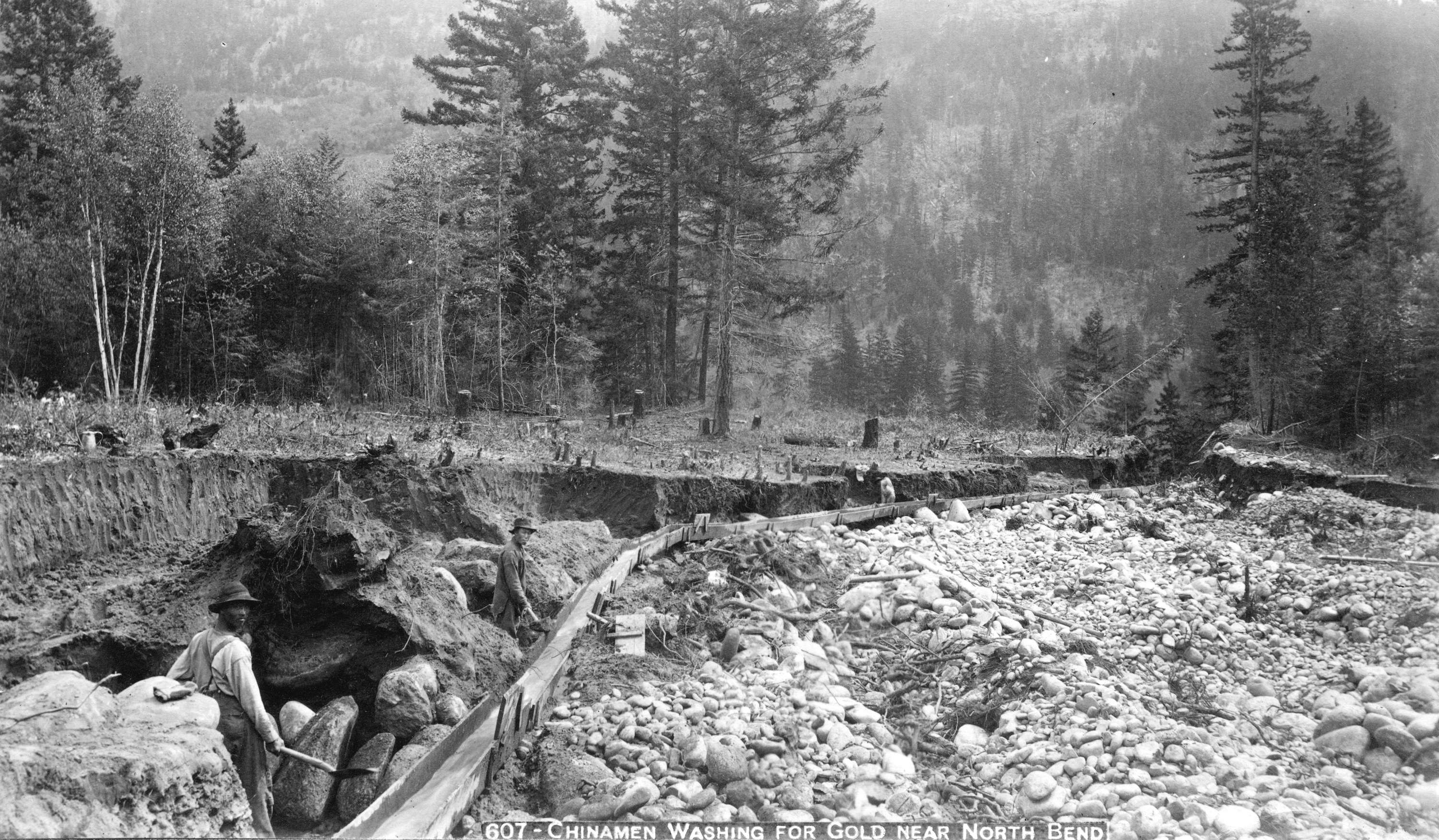 Chinese men mining for gold near North Bend in British Columbia, 1891.