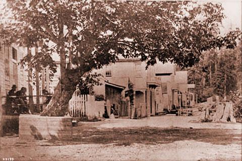 Gastown en 1870