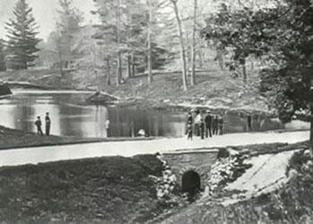 McCaul's Pond