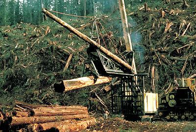Log Grappler
