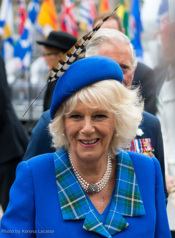 Duchess of Cornwall, 2014