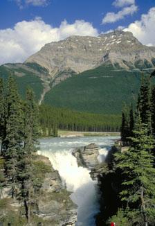 Chute Athabasca