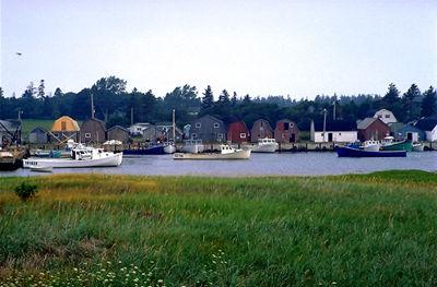 Malpeque Harbour